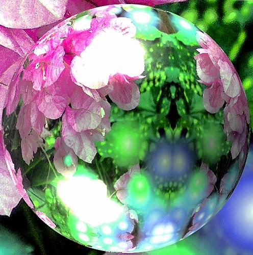 pink & blue globe 2