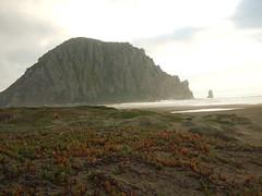 DSCF1780 (jessicanbm) Tags: california elephant rock march san dad jessica seal simeon morro esteban 2007