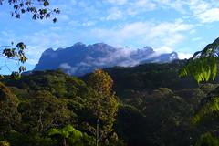 Mount Kinabalu (Eric Hunt.) Tags: mountain rocks malaysia borneo tropical mountkinabalu cloudforest sabah borneo2007