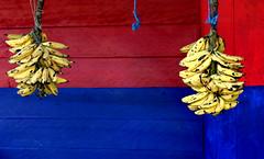 Flickr Bananas (Memo Vasquez) Tags: pink blue color azul fruit mxico casa flickr rosa fruta bananas chiapas pltanos peopleschoice racimo supershot memovasquez artlibre colorphotoaward diamondclassphotographer flickrdiamond superhearts