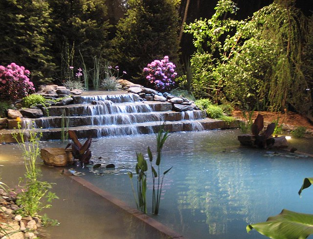Natural swimming pools an environmentally responsible way to cool off