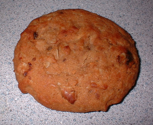 NutriSystem Oatmeal Raisin Cookie dessert