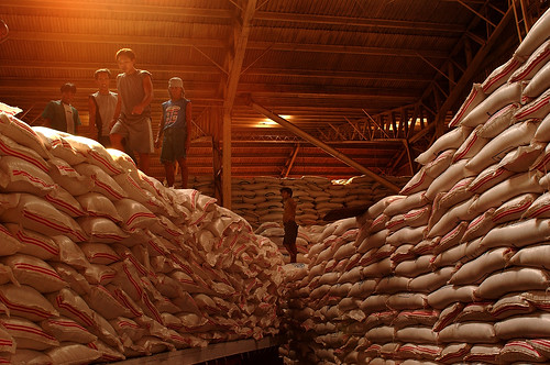 Dr. Mohanty says that for as long as decisions are made rationally by big rice-producing countries, the market will remain stable.