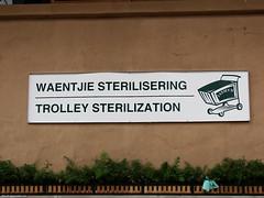 Waentje Sterilisering