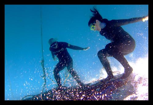 Freediving Fun: Platform Surfing