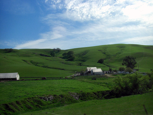 green land, blue sky