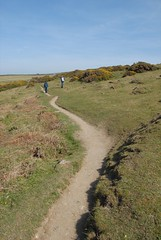 Cliff path.JPG (Kernow1) Tags: cliff cornwall walk boscastle