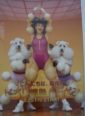 Fit as a Poodle (trepelu) Tags: poodles museum germany munich surreal fitness gym muenchen posterart aerobics pinakothekdermoderne leotards youtube susanpowter naginoda japaneseadvertising exfatgirl