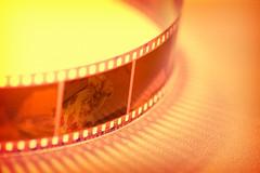 Caught on film (kktp_) Tags: film d50 nikon contest soe strobe sb800 theworldthroughmyeyes tamronspaf90mmf28dimacro11 nikoncls twtmeblogged abigfave leaveittome goldenphotographer litmwinner