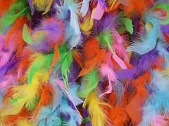 Feather Boa - by John_X