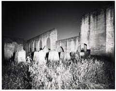 Cement Ruins (TunnelBug) Tags: blackandwhite film factory cement delta urbanexploration bayarea 4x5 100 ilford largeformat tachihara