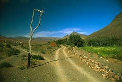 Track (mm-j) Tags: camping mountain colour film expedition fuji pentax slide velvia morocco berber april epson 50 pentaxmesuper 2007 polariser 28mmf28 4490 jebelsahro scanfromtransparency