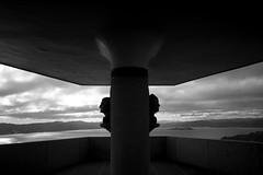 (K_iwi) Tags: leica newzealand wellington m8 kiwi 34 21mm superangulon f34 leicasuperangulonf3421mm