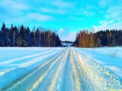 К обеду тучи раступились, снег закончился и зимнее солнце осветило наш путь. День становился по-настоящему прекрасным.