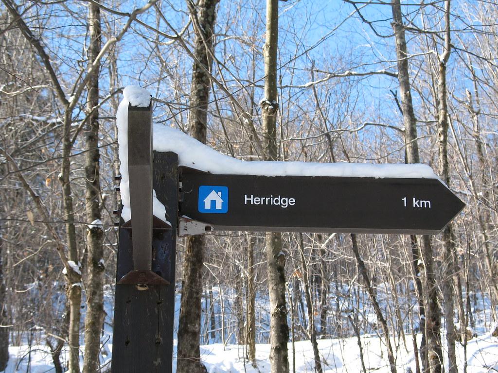 Herridge sign