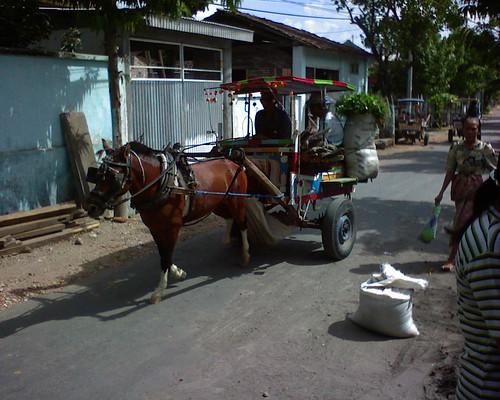Cidomo, alat transportasi khas Lombok