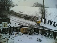 Snow 2, Feb 07