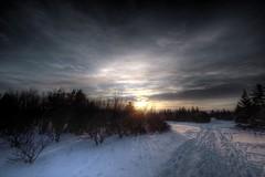 Footprints in the snow (hoskarsson) Tags: trees sunset sky snow iceland day footprints reykjavik hdr skjuhl