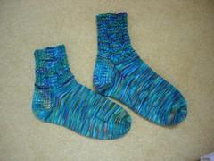 FA socks