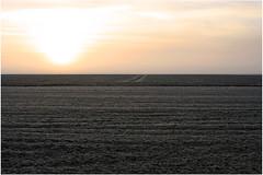 5436risingIn72X01214 (ladams_272031) Tags: morning travel winter nature fog rural sunrise nc farmland backroads mattamuskeet