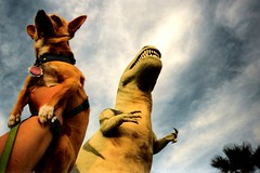 Cabazon Floyd (EllenJo) Tags: california travel usa chihuahua west film highway roadtrip floyd dinosaurs trex 2007 cabazon tyranosaurus peeweesbigadventure interstate10 cheapcamera wheelinn cabazondinosaurs nearpalmsprings cabazonca greetingsfromfloydstreet greetingsfromfloydst ellenjoroberts ellenjdroberts ejdroberts ellenjocom californiadinosaur travelingchihuahua