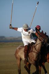 (Calovi) Tags: horse public sport caballo uruguay cheval cavallo cavalo polo pferd medellin uy joseignacio calovi medellinpoloclub