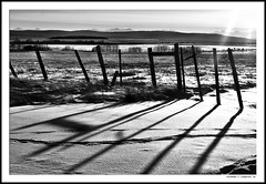 The Shadow (justpedalhard) Tags: snow canada calgary ef50mmf14 alberta hdr winterlandscape primelens canonrebelxti400d