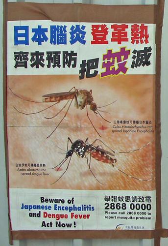 mosquitos.jpeg