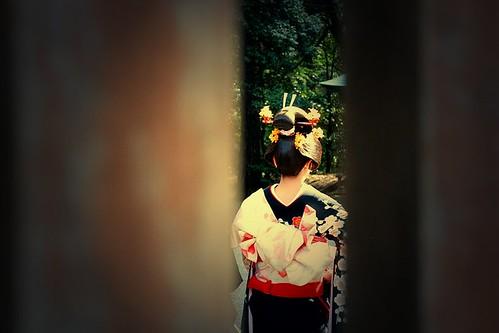 stalking a geisha