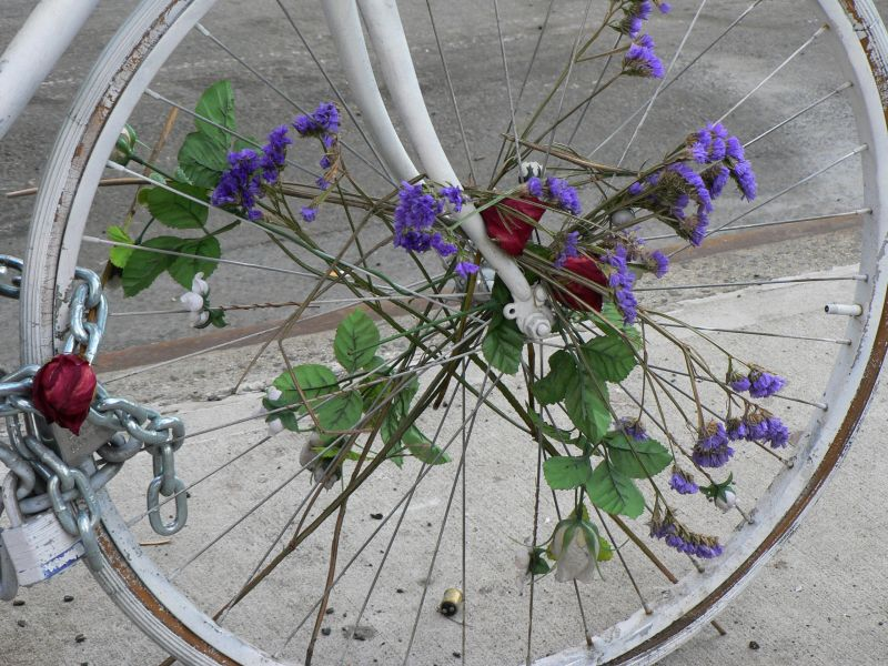 Ghost Bike Flowers