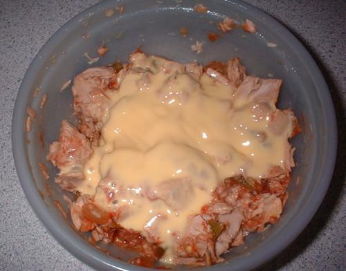 My tuna, salsa, & cheese creation