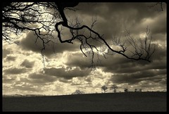Dark (andrewlee1967) Tags: abigfave bravo cheshire blackandwhite andrewlee1967 uk andylee1967 canon400d england landscape mono bw monochrome focusman5 andrewlee
