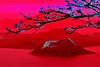 crimson escape (©DocTony Photography) Tags: red mountain color nature crimson volcano neon philippines interestingness120 interestingness250 interestingness136 interestingness199 interestingness150 doctony explore21march2007