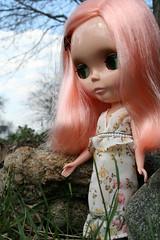 Blythe in the grass (CarrieLu) Tags: doll blythe mademoisellerosebud