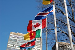 Flags at the UN Building
