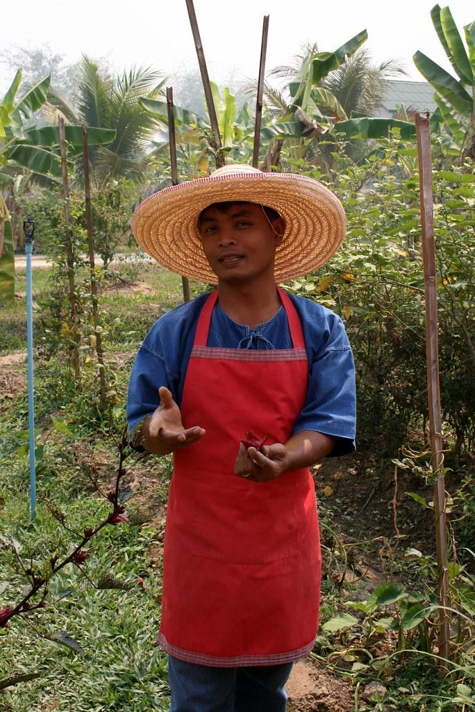 Thai Farm Cooking Course