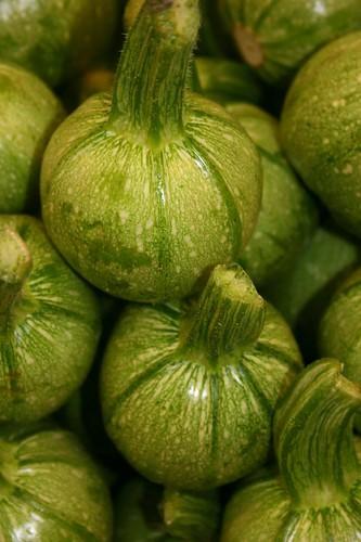 Round Zucchini / Courgette / kishu'im / ??????
