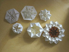 Myh origami  img00152 (M-yh origami) Tags: flowers flower color colors origami image crafts craft images fold paperfolding folds folding papercraft paperflower origamiflower flowerimage myhorigami 종이접기zongyeezerbgee