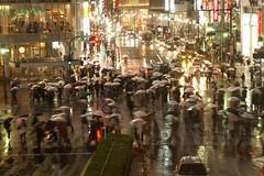 SHIBUYA RAIN (Nohchi Oda) Tags: blur rain tokyo neon shibuya crosswalk umnrella