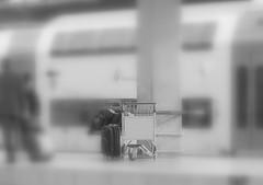 The suitcase (siresim) Tags: italy station train florence italia tracks railway trains tuscany firenze toscana stazione stations ferrovia binari treni stazioni smn impressedbeauty stazionando
