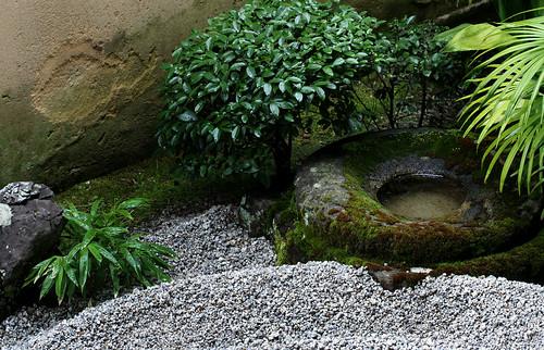 zen garden #11