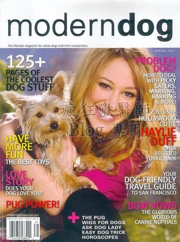 moderndog1_nEO_IMG