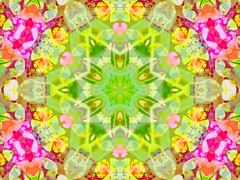 Spring Mandala (Lynn (Gracie's mom)) Tags: wallpaper abstract 510fav photoshop artwork kaleidoscope fractal fractals kaleidoscopes beautyisintheeyeofthebeholder cammiangel kaleidoscopesonly