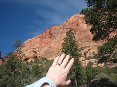 Zion National Park Engagement