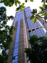 Parque Central (La Pluma) Tags: parque trees building tree green day arboles venezuela edificio central center dia caracas ventanas verdes vegetacion matas
