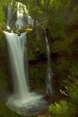 Falls Creek Falls (Ar'alani) Tags: lighting longexposure sunlight green nature landscape waterfall washington fallscreekfalls abigfave hoyamoose