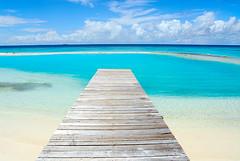 road to nowhere (muha...) Tags: road beach bravo jetty nowhere lagoon maldives vivd utatafeature sunnysideoflife