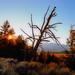 A Teton Sense of Place - by Fort Photo