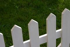 Fences me in (Kirsten M Lentoft) Tags: white green home grass fence garden denmark glostrup momse2600 sofielundsvej kirstenmlentoft