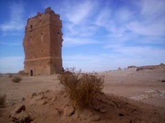 Al-Heer Al-Gharbi Palace